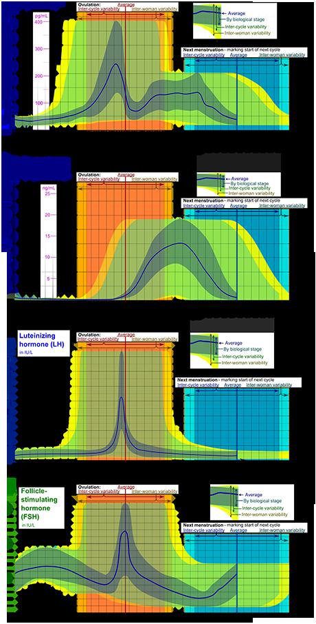 Normal testosterone levels in women chart - Zmajeva kugla
